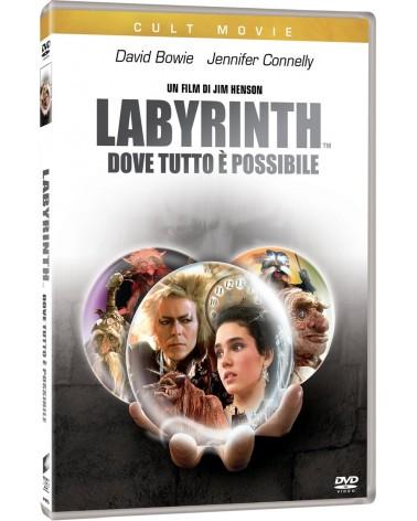 DVD LABYRINTH DOVE TUTTO E'...