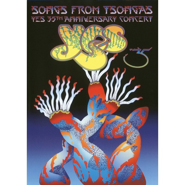 DVD Yes songs from tsongas 35th anniversary concert ( doppio dvd)