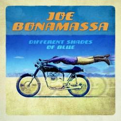 CD Joe Bonamassa different shades of blue
