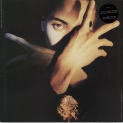 LP Terence Trent D'Arby Neither Fish Nor Flesh