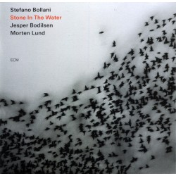 CD Stone in the Water, STEFANO BOLLANI-602517941618