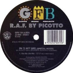 LP R.A.F. BY PICOTTO