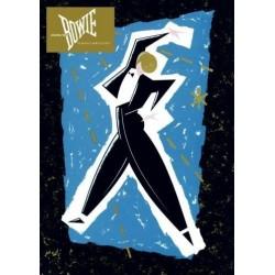 DVD DAVID BOWIE SERIOUS MOONLIGHT 094634153997