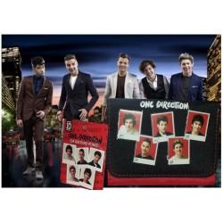 Portafoglio One Direction