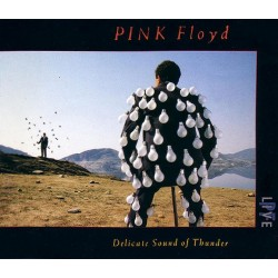 CD DOPPIO PINK FLOYD DELICATE SOUND OF THUNDER 077779148028